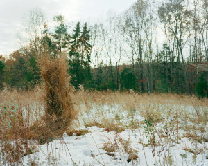 Ghillie Suit (Weeds), 2012